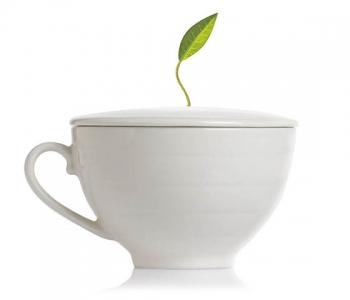 Tea Forte Ceasca Ceai Portelan