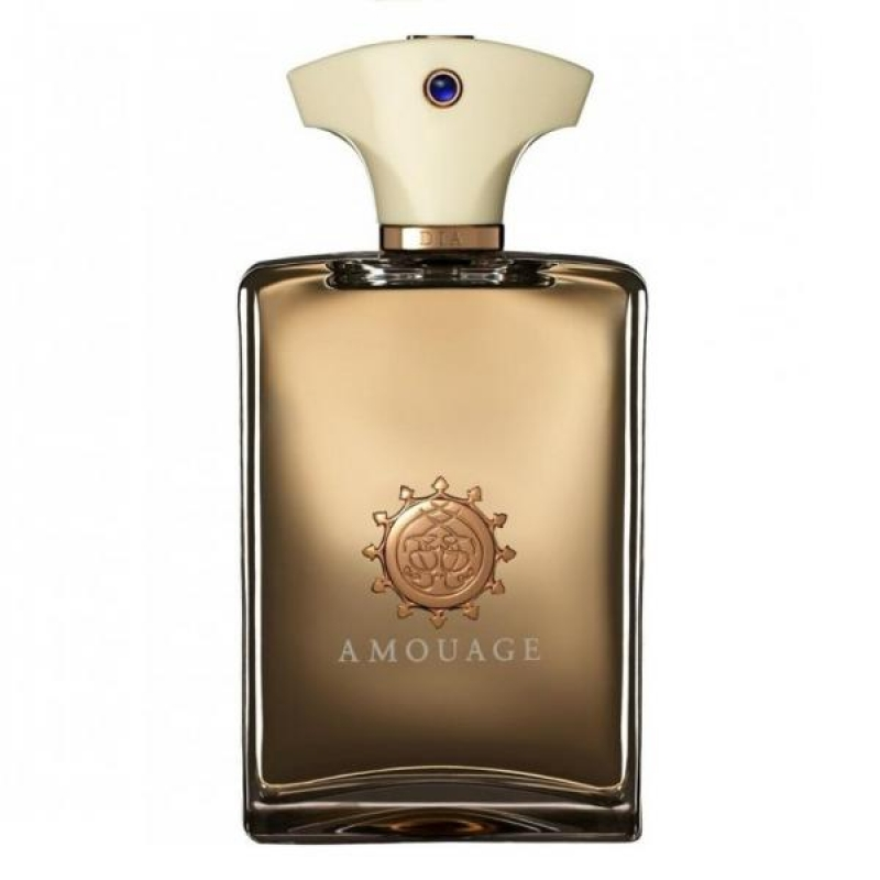 AMOUAGE DIA FOR  MEN EDP 100ML 0